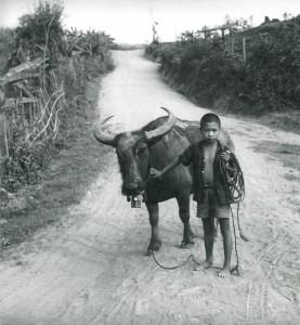 Province de Kampong Chhnang © Micheline Dullin.